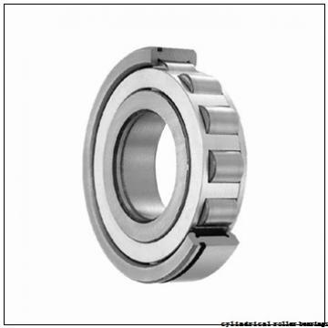 35 mm x 100 mm x 25 mm  NACHI NP 407 cylindrical roller bearings