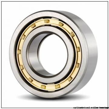 100 mm x 250 mm x 58 mm  NACHI NP 420 cylindrical roller bearings