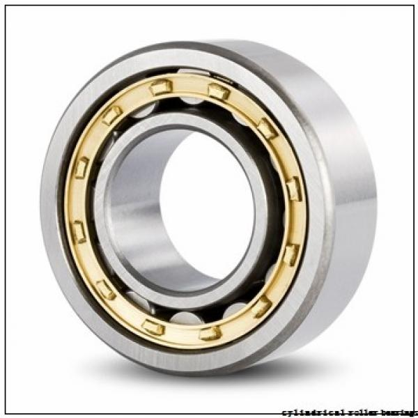 45 mm x 85 mm x 23 mm  SIGMA NJ 2209 cylindrical roller bearings #1 image